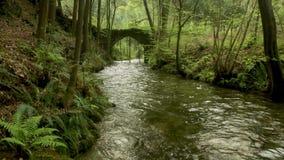 Vecchio ponte della roccia sopra il fiume di Filveda archivi video