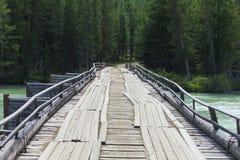 Vecchio ponte di legno attraverso il fiume di Argut La Russia siberia fotografia stock libera da diritti