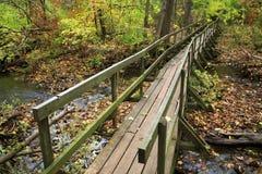 Vecchio ponte di legno del piede Immagine Stock Libera da Diritti