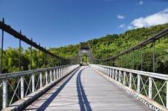 Vecchio ponte sospeso, Reunion Island Immagini Stock