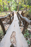 Vecchio ponticello di legno Immagine Stock