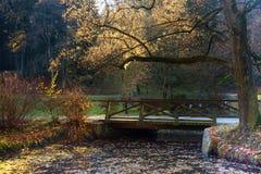 Vecchio ponticello di legno Immagini Stock Libere da Diritti