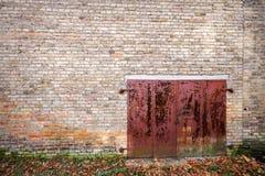 Vecchio portone del metallo Fotografia Stock