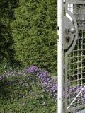 Vecchio portone di giardino in primavera Fotografia Stock