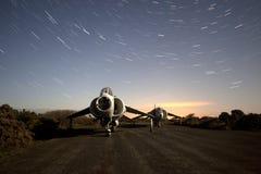 Vecchio predatore alla notte Fotografie Stock