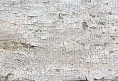 Vecchio primo piano incrinato della pittura Fotografia Stock