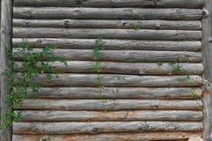 Vecchio recinto di legno Immagine Stock