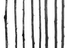 Vecchio recinto di legno, in bianco e nero Fotografie Stock
