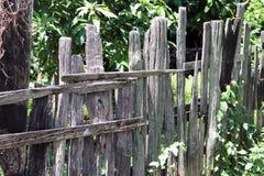Vecchio recinto di legno con il fondo verde dell'albero Fotografie Stock Libere da Diritti