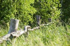Vecchio recinto di legno crollato sull'erba Immagini Stock Libere da Diritti