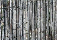 Vecchio recinto di legno grigio Fotografia Stock