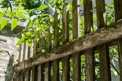 Vecchio recinto tagliato piacevole Fotografia Stock