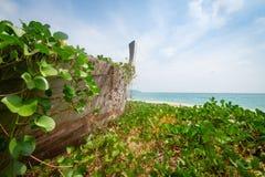 Vecchio relitto di legno abbandonato della barca Fotografie Stock