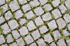 vecchio reticolo del cobblestone Immagine Stock