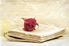 Vecchio romance Fotografia Stock