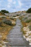 Vecchio sentiero per pedoni di legno immagine stock