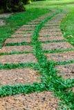 Vecchio sentiero per pedoni di pietra su erba verde Fotografia Stock