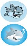 Vecchio squalo Fotografia Stock