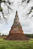 Vecchio Stupa a Ayutthaya, Tailandia Immagine Stock