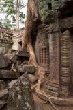 Vecchio tempio in ANKOR Wat Kambodia Immagini Stock Libere da Diritti