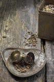 Vecchio tempo del tè di modo Fotografia Stock Libera da Diritti