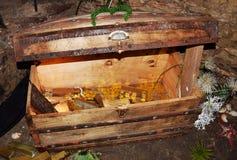 Vecchio tesoro al castello Zumelle, a Belluno, l'Italia Fotografie Stock