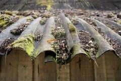Vecchio tetto di mattonelle con le vecchie foglie, il muschio e la parete non colorata della plancia Fotografia Stock