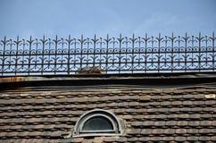 Vecchio tetto piastrellato Immagine Stock Libera da Diritti