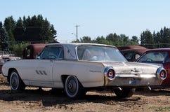 Vecchio Thunderbird bianco Immagine Stock