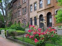 Vecchio tipo costruzioni del brownstone di appartamento immagine stock libera da diritti