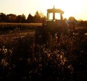 Vecchio trattore nel campo sull'azienda agricola durante il giorno di estate Immagine Stock
