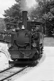 Vecchio treno del giardino zoologico Fotografia Stock Libera da Diritti
