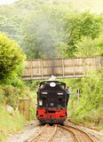 Vecchio treno del motore a vapore, ferrovia dell'altopiano di Lingua gallese Fotografie Stock Libere da Diritti