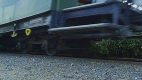 Vecchio treno storico 4K della locomotiva a vapore della ferrovia a scartamento ridotto stock footage