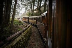 Vecchio treno sulla foresta ferroviaria Fotografia Stock