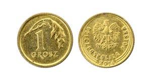 Vecchio usato una moneta polacca del grosz isolata su fondo bianco fotografie stock libere da diritti