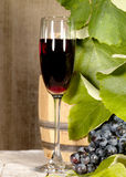 Vecchio vino rosso Fotografia Stock
