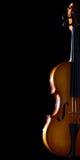 Vecchio violino. Fotografia Stock Libera da Diritti