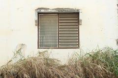 Vecchio Windows Fotografie Stock Libere da Diritti
