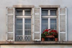 Vecchio Windows con gli otturatori e le piante Fotografie Stock