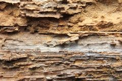 Vecchio woden la struttura del fondo con il modello naturale Fotografia Stock