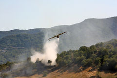Vechtende bosbrand Stock Foto's
