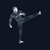 Vechtende mens 3D Model van de Mens Menselijk Lichaamsmodel Lichaamsaftasten Mening van Menselijk Lichaam Vectorgrafiek die uit D Royalty-vrije Stock Foto