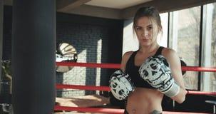 Vechter die van de portret de kickboxing vrouw zeker woeste sportvrouw bekijken die van camera de taaie vrouwelijke kickboxer daa stock footage