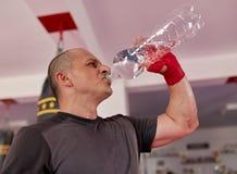 Vechters drinkwater royalty-vrije stock fotografie