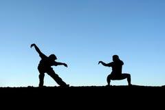 Vechtsporten stock afbeelding