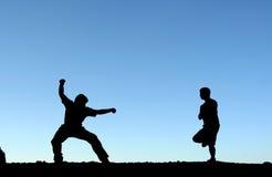 Vechtsporten royalty-vrije stock afbeelding