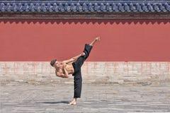 Vechtsporten het hoofd praktizeren bij Tempel van Hemel, Peking, China stock afbeeldingen