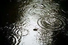 vecket markerar regn Arkivfoton