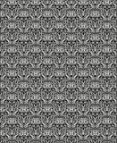 vecnjr Negro-blanco Foto de archivo libre de regalías